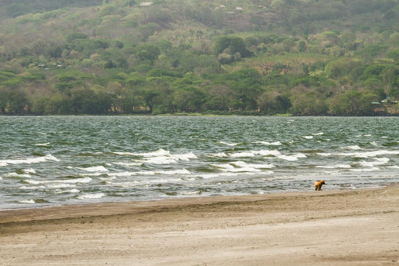 Playa_Santo_Domingo_Ometepe_Nicaragua_Altagracia_lago_nicaragua