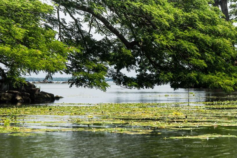Recorrido por las isletas de Granada, Nicaragua, en el Lago Cocibolga o Lago Nicaragua.